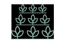 Bioecon es un sistema económico descentralizado, autorregulado y sensible al crecimiento, en que el medio de cambio es generado por los mismos participantes de manera orgánica como resultado de su actividad.